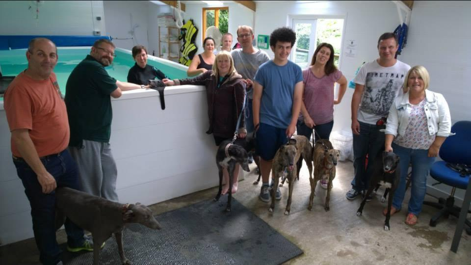 A group of Greyhounds with their owners around the hydrotherapy pool